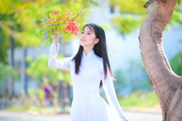 Ảnh nữ sinh áo dài hoa phượng đẹp